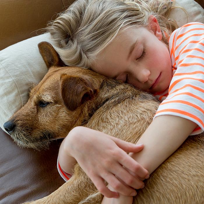 Geruchsentferner für Haustiere